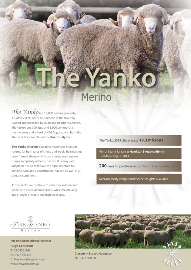 Yanko-Flyer